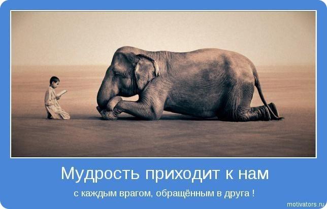http://dileo.ru/uploads/images/00/60/57/2011/01/11/472b89.jpg