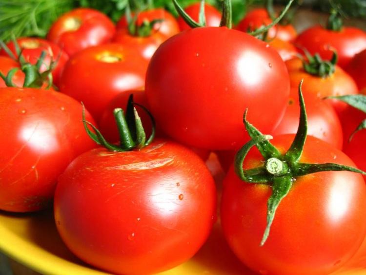 О пользе помидоров