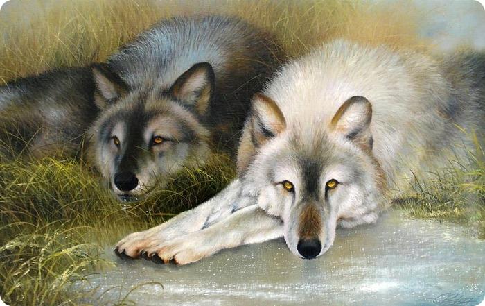 по фен шуй картина волки тонкое комбинированное термобелье
